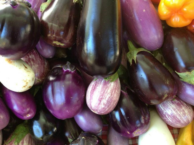 Oodles of eggplant varieties. [H. Guenther]