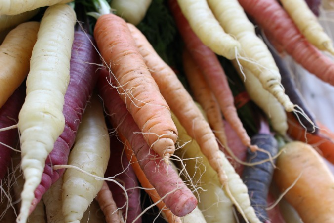 colorful-carrots-Anne-of-Green-Gardens